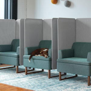 Private accent seating with dog laying on middle chair